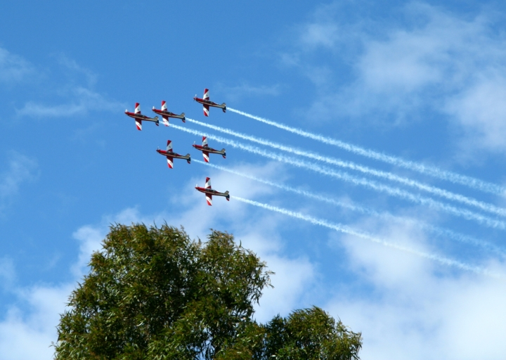 the roulettes australian f1 grand prix