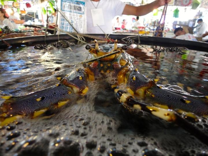 seafood markets boracay