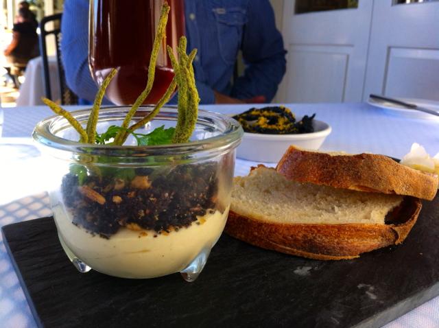 edible pot plant long apron montville