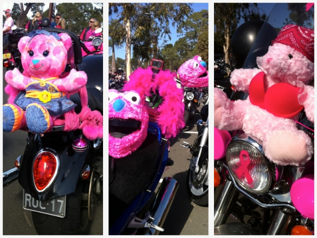 pink ribbon bears
