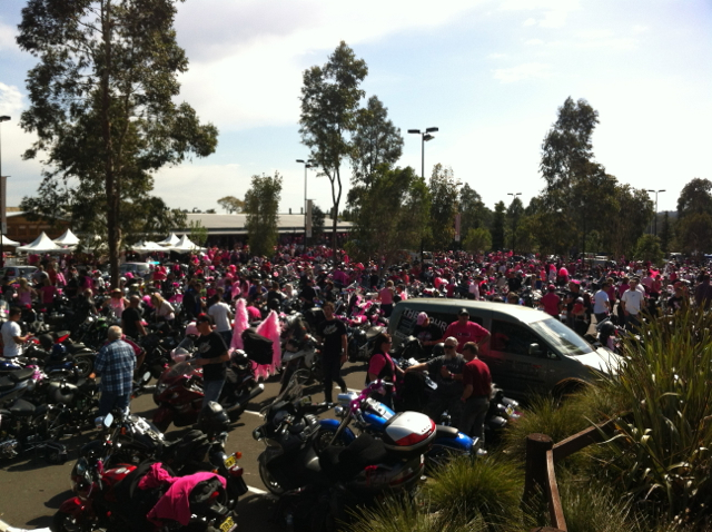 pink ribbon riders